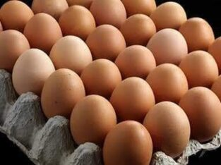 POULTRY And LIVESTOCK .08032178904. CONTACT THEM FOR EGGS BIRDS ,POINT OF LAY,OLD LAYERS,BROILERS PI