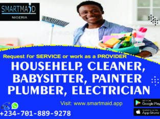 Cleaning, Babysitting, Housekeeping, Nanny Service